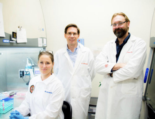 New multi-faculty Centre for Cell Therapy Translation gives UCalgary skin in the game for regenerative medicine research